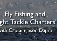 Fly Fishing and Light Tackle Charters with Captain Jason Dapra